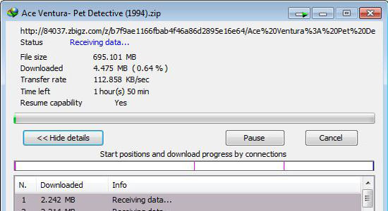 Torrents Downloaded With IDM